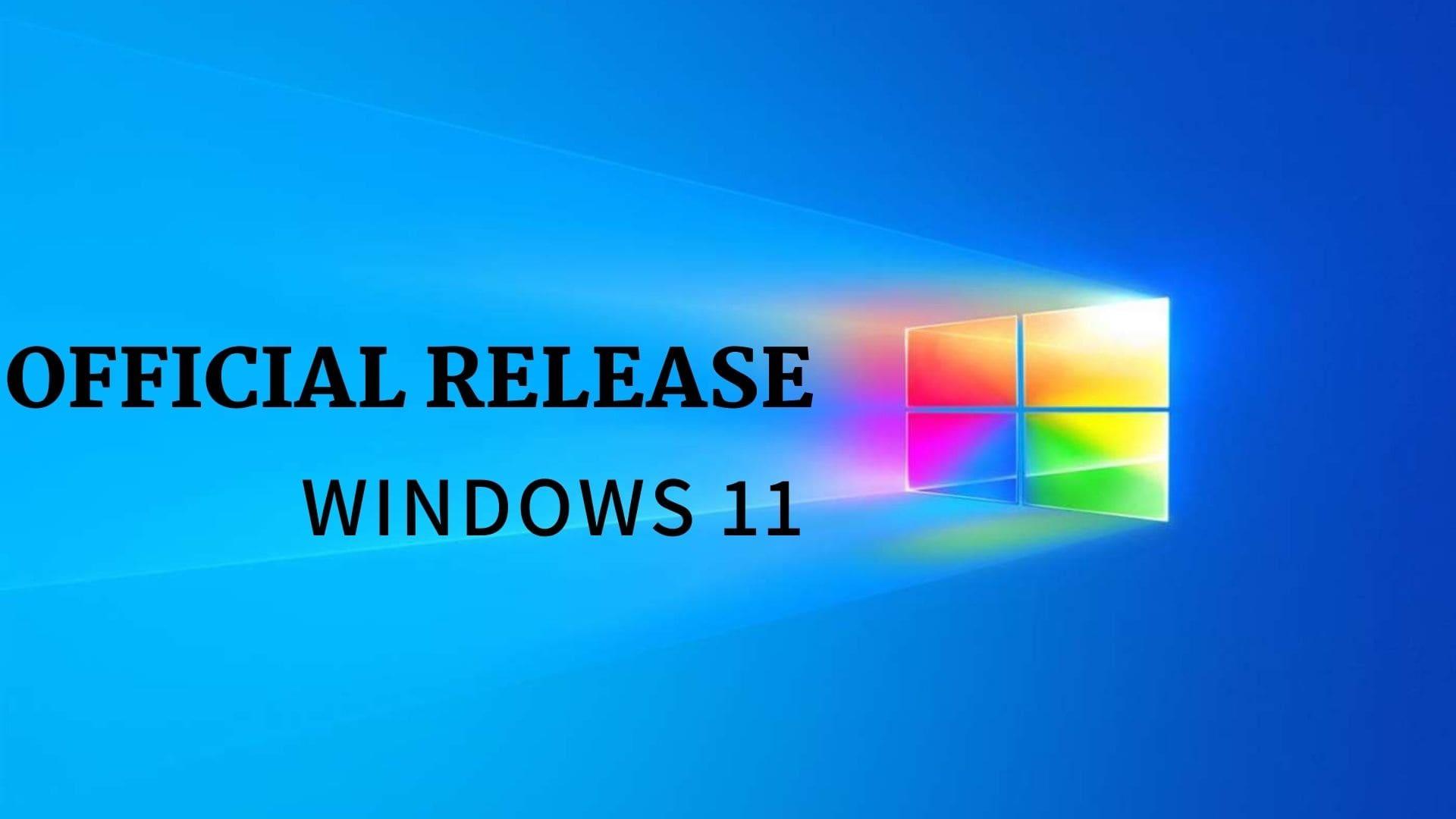 windows 11 themes