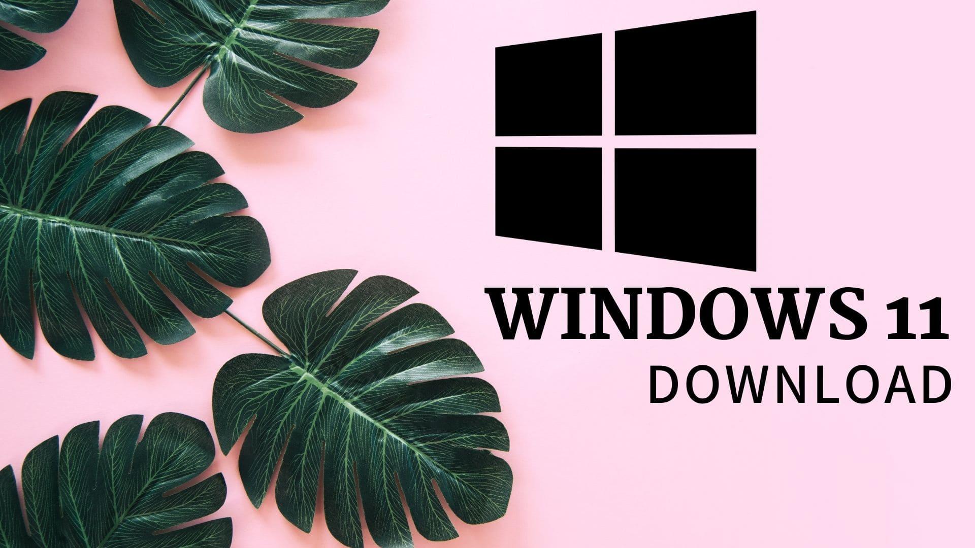 windows 11 release date?
