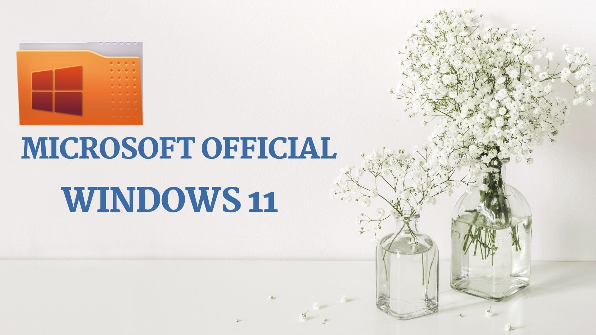 win 11 official release date