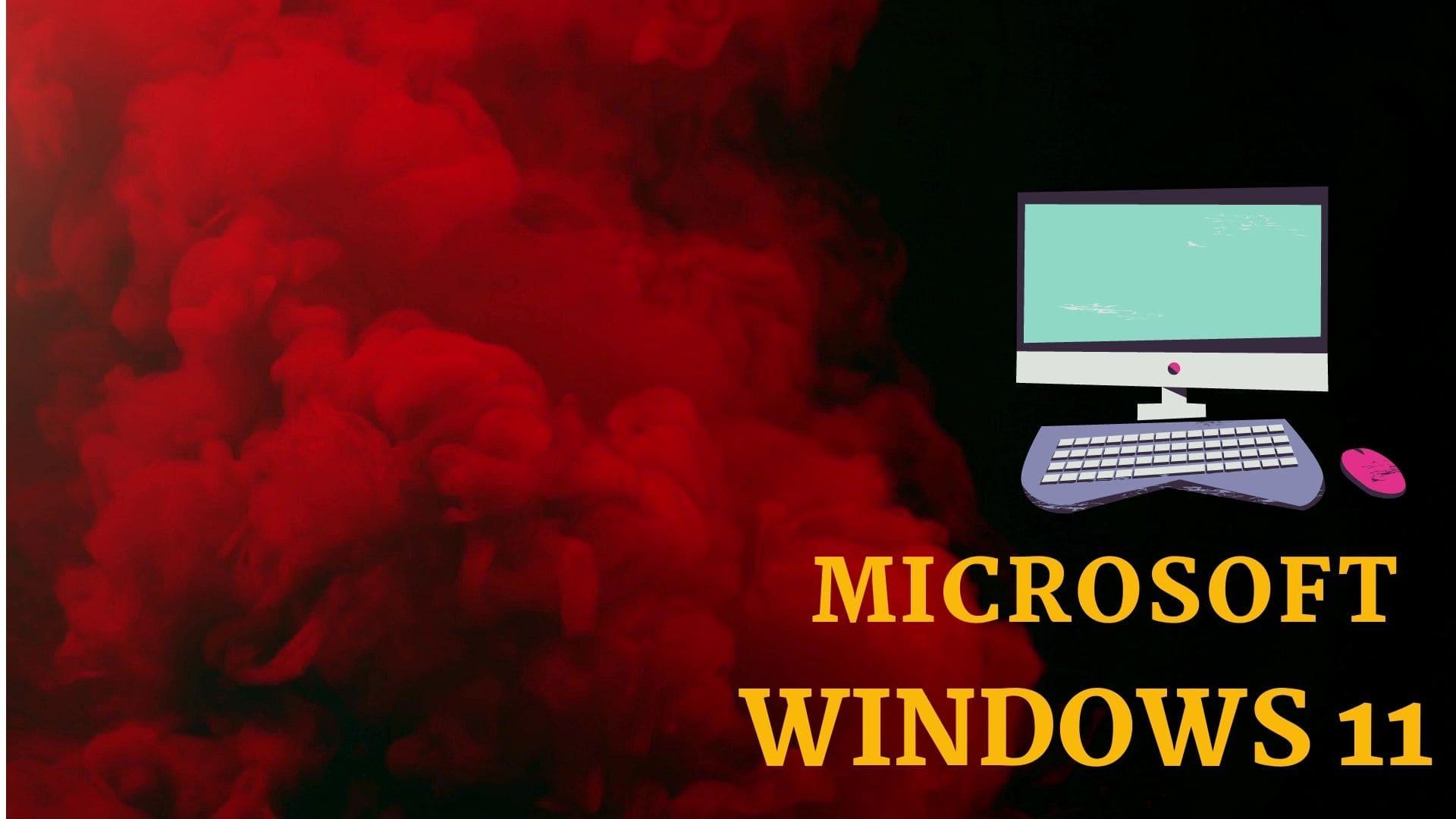 windows 11 advance features